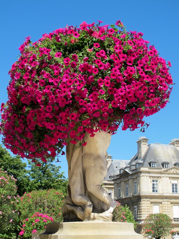 Paris -9835