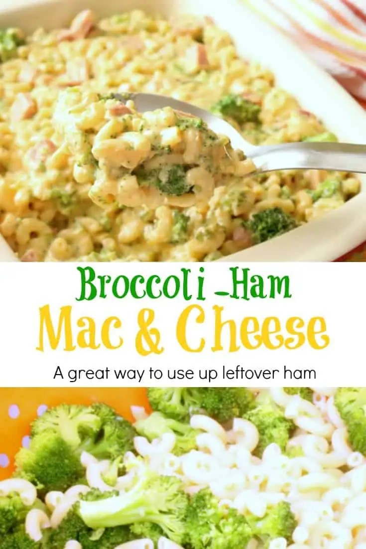 Fresh steamed broccoli and perfectly cooked macaroni noodles are enrobed in a velvety cheese sauce and then tossed with some ham cubes in this delicious Broccoli Ham Mac and Cheese.