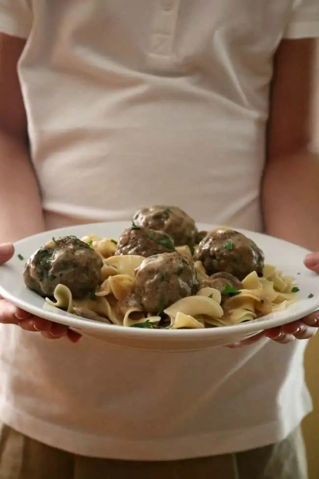 A plate of meatballs stroganoff being held by a person.