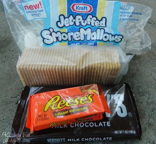 My 9 year old suggested that we have a Hershey's vs. Reese's S'more challenge!