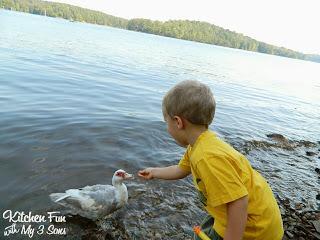We had fun feeding the ducks