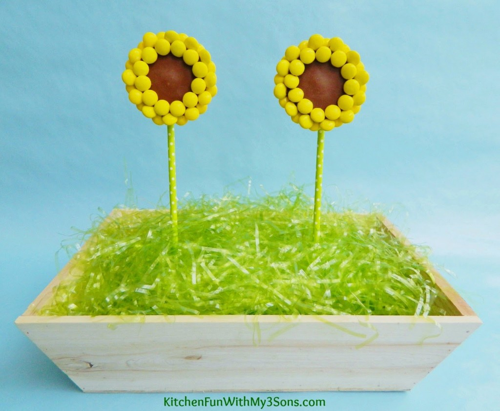 Reese's Peanut Butter Cup Sunflower Pops
