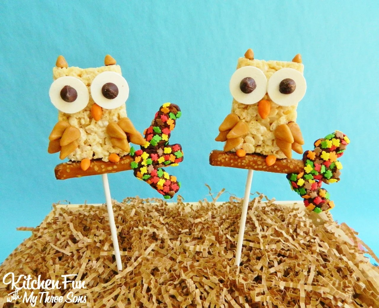 10 Adorable Owl-Themed Sweet Treat – Eric\'s Cakes