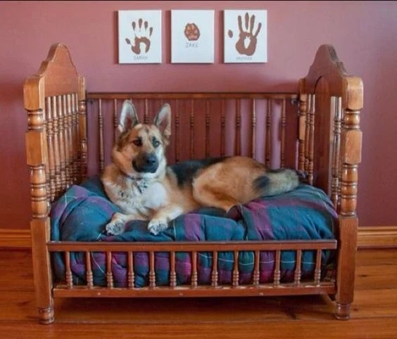 Turn a Baby Crib into a Dog Bed...these are the BEST Upcycled & Repurposed Ideas!