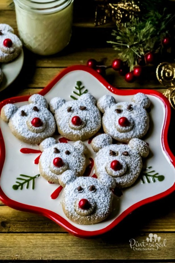 Spiced Polar Bear Cookies...these are the BEST Christmas Cookie Recipes!