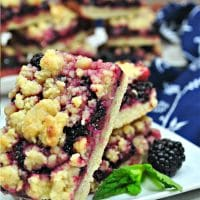 Blackberry Pie Crumble Bars
