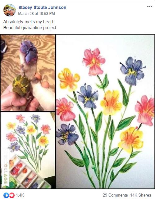 Dog Paw Print Art