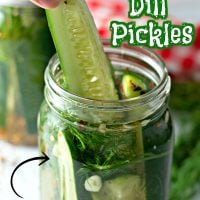 The BEST Refrigerator Dill Pickles Pinterest