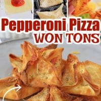 Pepperoni Pizza Won Tons made in the Air Fryer