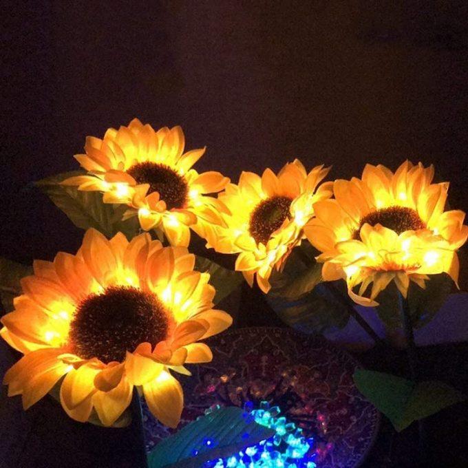 Svjetla od suncokreta