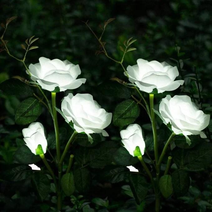 Roses Solar Lights