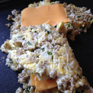 Ground Turkey and Cilantro Veggie Cheese Omelet