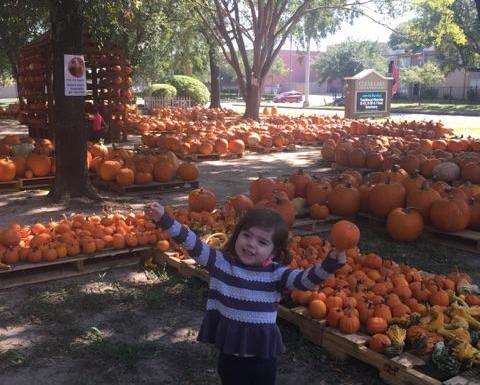 pumpkin farms with grandchildren