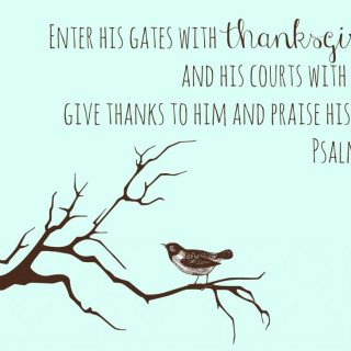 Thankfulness and Everyday Blessings - Kitchen Joy