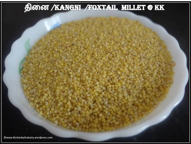 thinai_foxtail_kangni