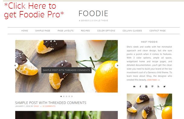 FoodieProTheme