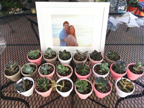 Succulent Party Favors - Again cute genius ideas of Ale