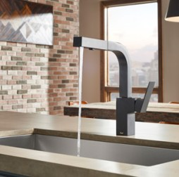 Black Danze Kitchen Faucets