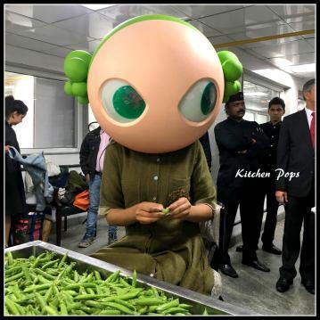 Princess Pea at Le Meridien New Delhi Family Club workshop