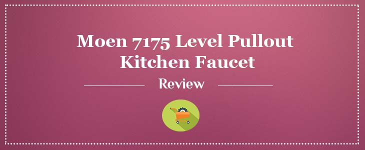 Moen 7175 Level Pull Out Kitchen Faucet Review