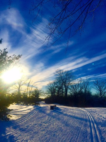 """Lisa Balerna writes: """"I am a proud Kitchissippi resident for the past 12 years. I enjoy reading the paper to find out what is going on in our community.... Here are some photos from skiing SJAM trail. My home backs on parkway so I have easy access. It has been a gift!"""" You can find Lisa on Twitter @lisabalerna."""