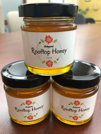 Rooftop honey is coming to Carlingwood this summer