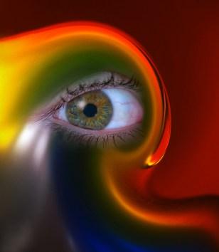 """The Eye"" by Julie Rollinson"