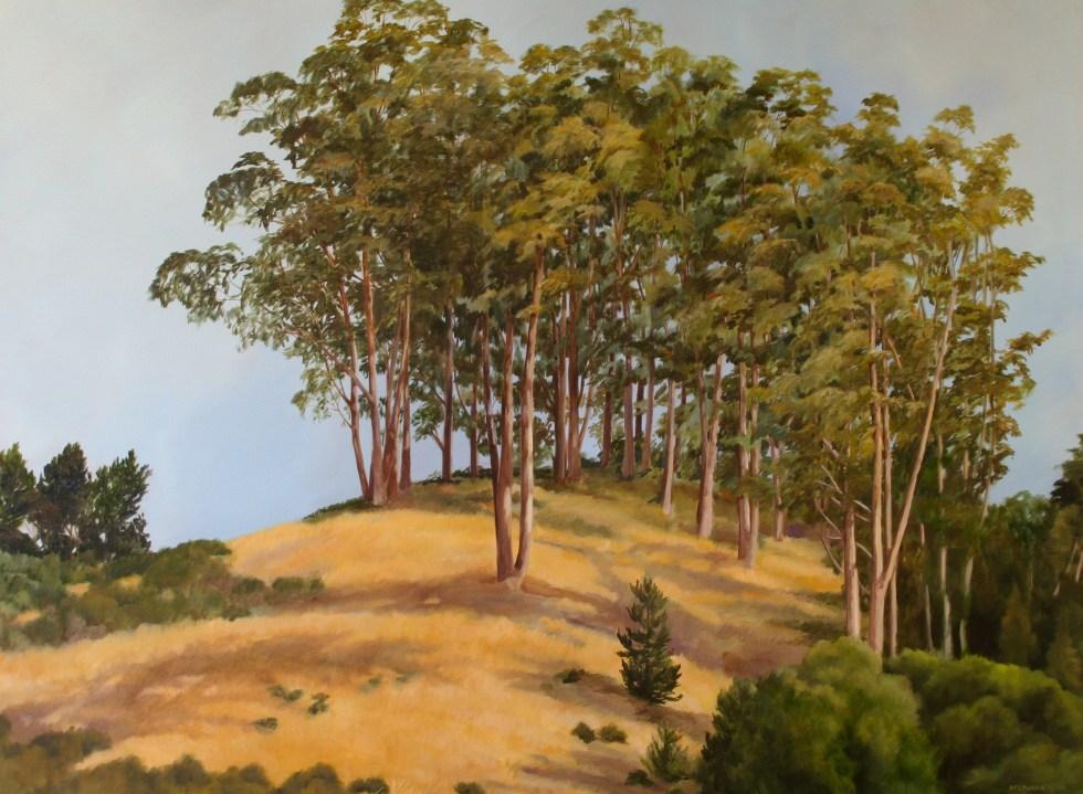 Eucalyptus Grove along 280 - 36 x 48 in. - Oil on Canvas