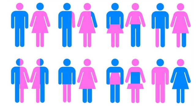gender_640x345_acf_cropped
