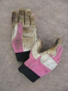 My favorite gardening gloves. Perfect for pulling up thistles.