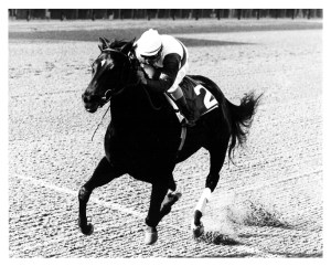 Ruffian, with her jocky Jacinto Vazquez.  Wikipedia Commons