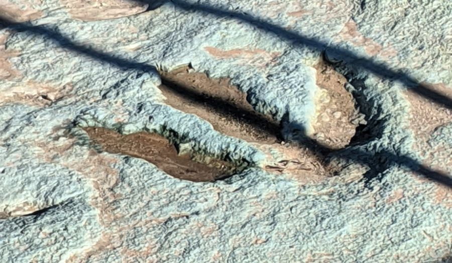 Large fossilized 3-toed theropod track in green and red sandstone. From Mill Canyon Dinosaur tracksite near Moab, UT. Photo by Kit Dunsmore