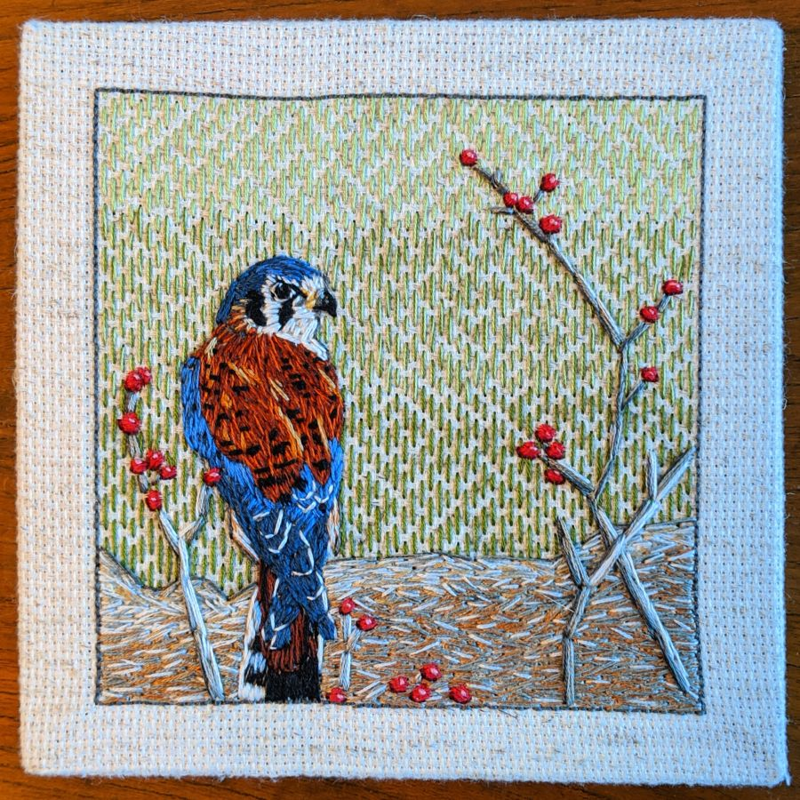 Square embroidery of a male American kestrel sitting on a log with branches and berries. Embroidery by Kit Dunsmore inspired by Janet Haas photo.