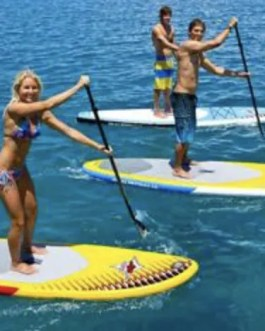 sup beginner course