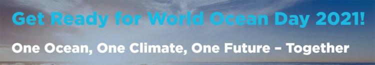 Gedrag en goede gewoontes kitesurfen en kitesurfers ter ere aan Wereld Oceanen Dag
