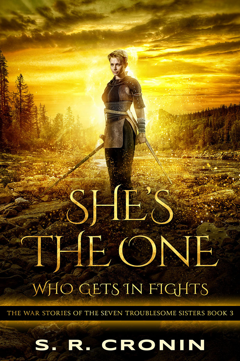 cover of She's the One Who Gets in Fights by S. R. Cronin