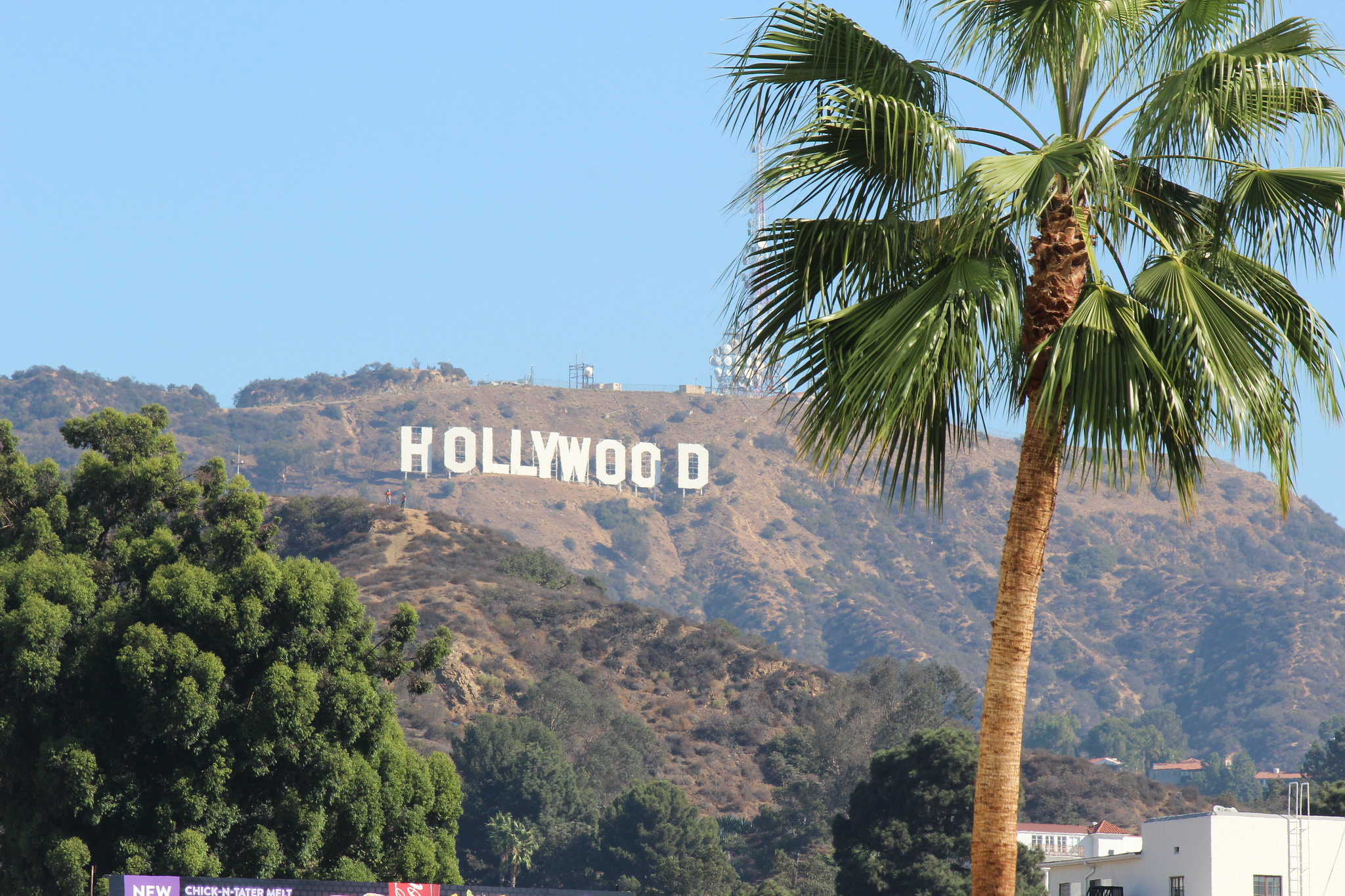 The Hollywood Sign Is Seen From An Overlook With Palm Trees October 6 2014 Flickr Shinya Suzuki