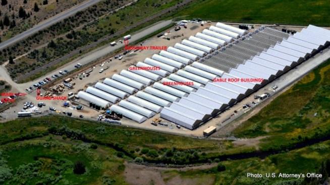 A view of the marijuana farm on the XL Rancheria in California.