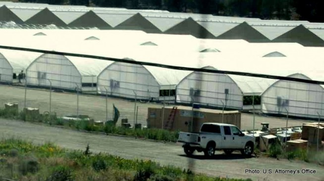 A view of the greenhouses that were used to grow marijuana on the XL Rancheria in California.