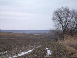 2011_DSCF4488