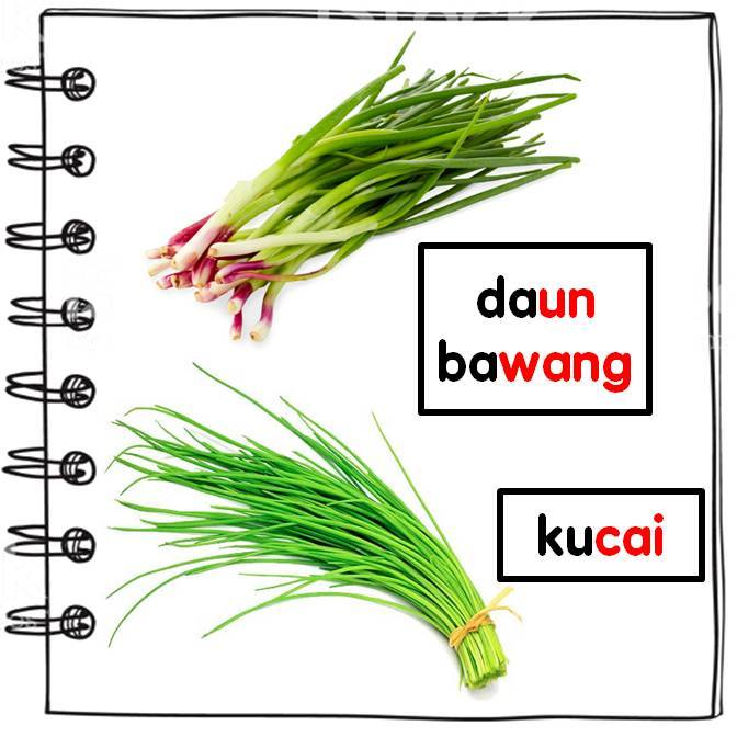 gambar-daun-ketumbar-petai Kamus Bergambar Sayur-Sayuran Untuk Kanak-Kanak