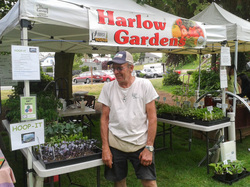 Member-Owner & Local Producer Spotlight – Doug's Harlow Gardens