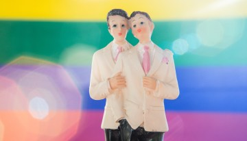 Same Sex Partnerships Evolving