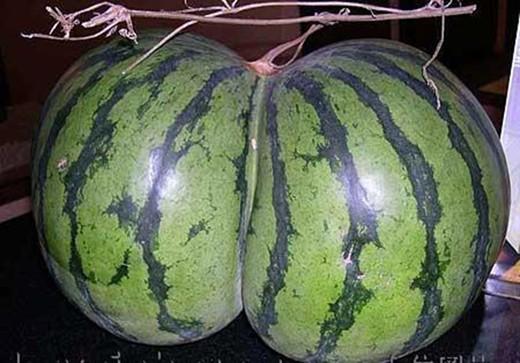 Watermelon ass