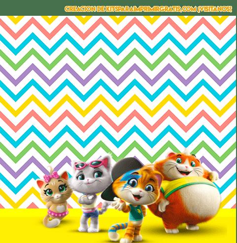 44 gatos imagenes marcos convite