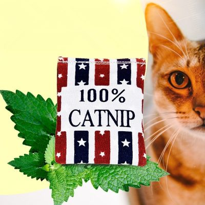 Uploaded To100% Linen Square Shape Catnip Bags cat Catnip Toy