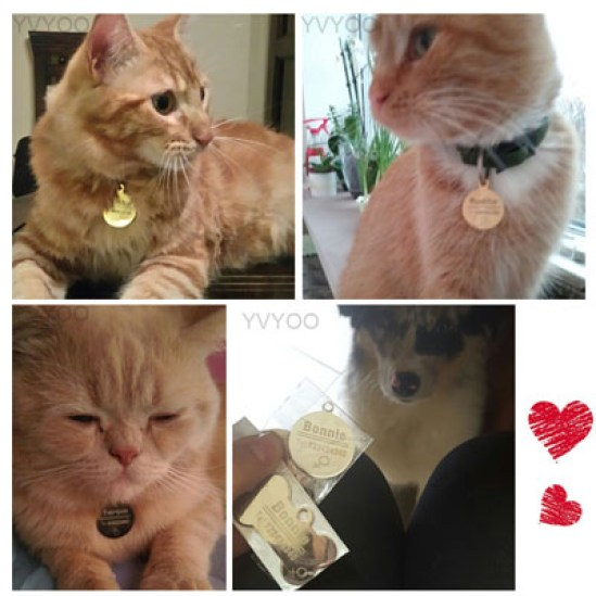 Stainless Steel Customized Cat Dog ID Tag
