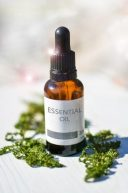 essential oils toxic to cats - breaking cat news