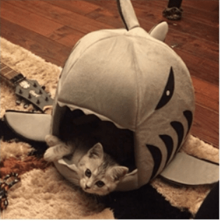 Shark Bed for Cat / Funny Cat Bed