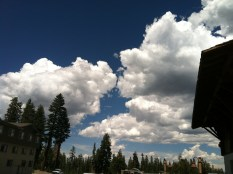 trees, clouds, roof overhang